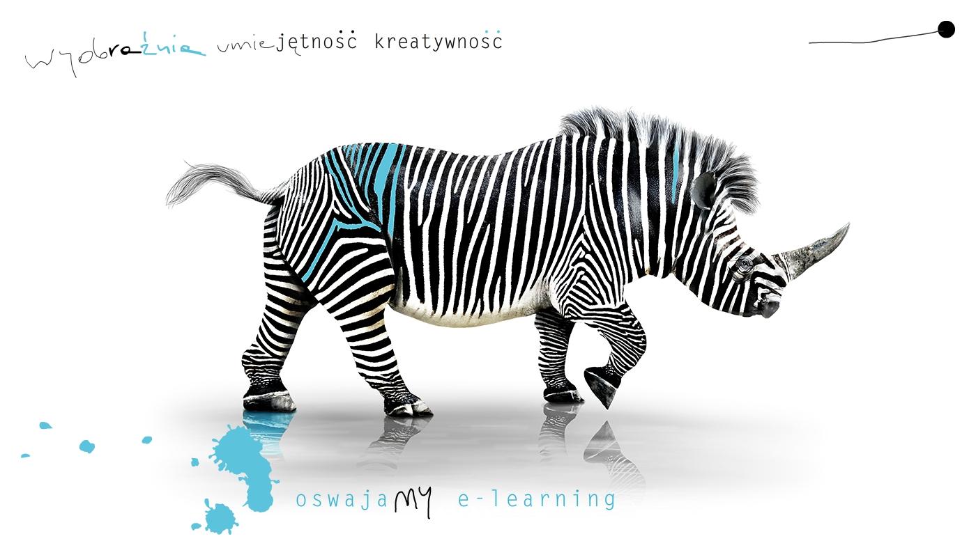 wyobraźnia, umiejętność, kreatywność, oswajamy e-learning