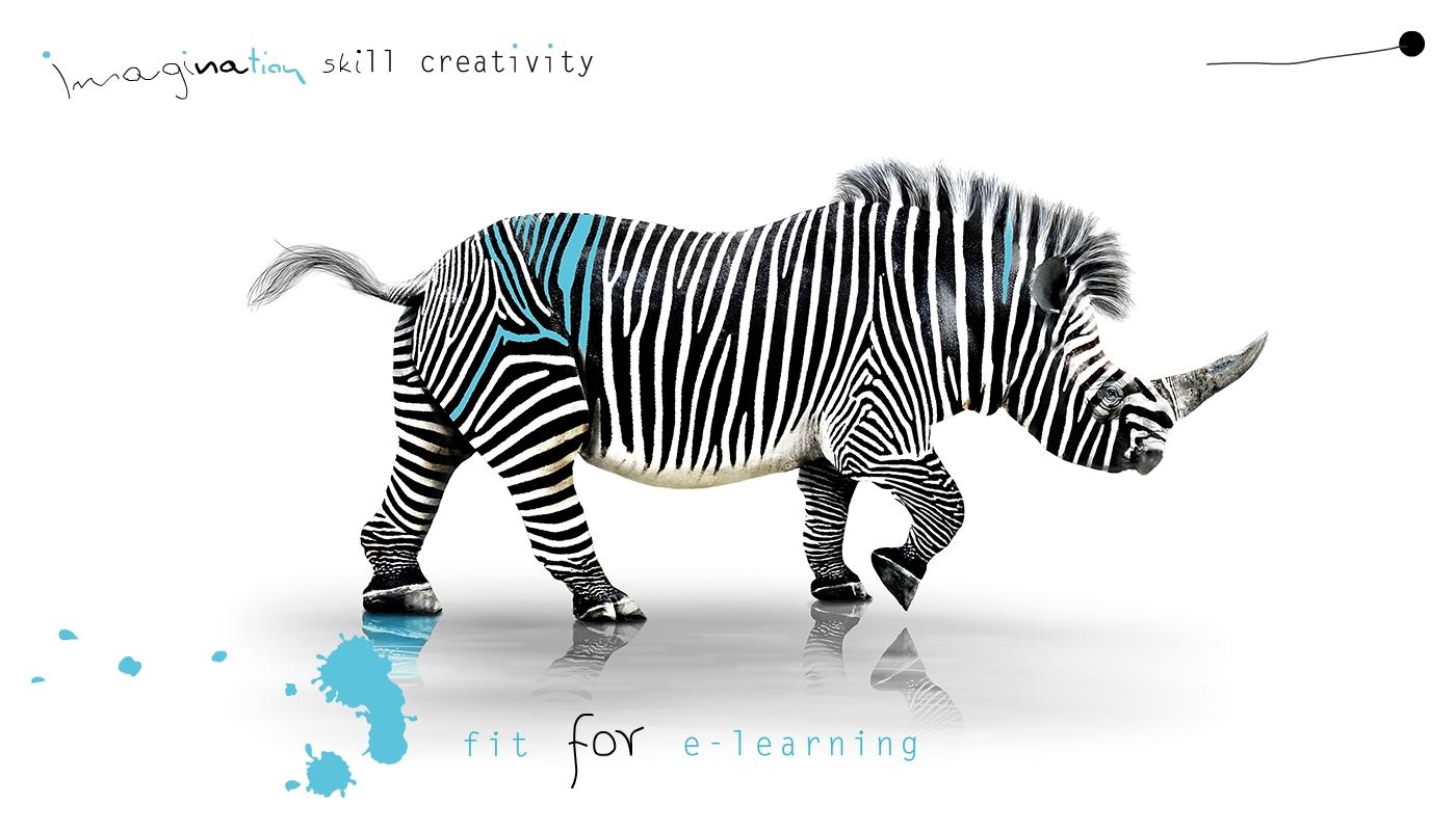 imagination, skill, creativity, tame e-learning
